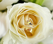 Signature Weddings has a stunning list of gorgeous wedding gift ideas from beautiful bouquets of flowers.